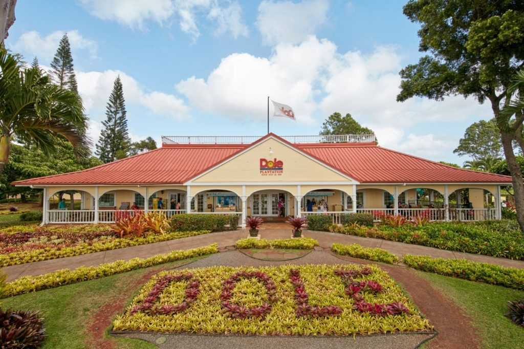 best pineapple farms in hawaii to visit island and you